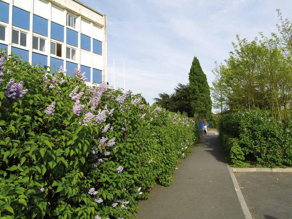 Campus scolaire à Châteaubriant