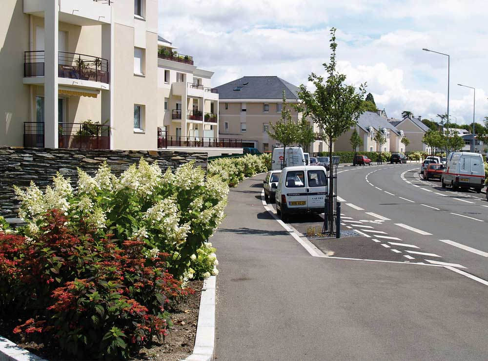La rue des hydrangeas à Angers